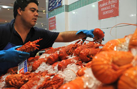 Picture for category Australian Seafood