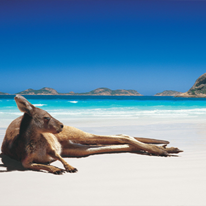 Picture of Australian Holiday