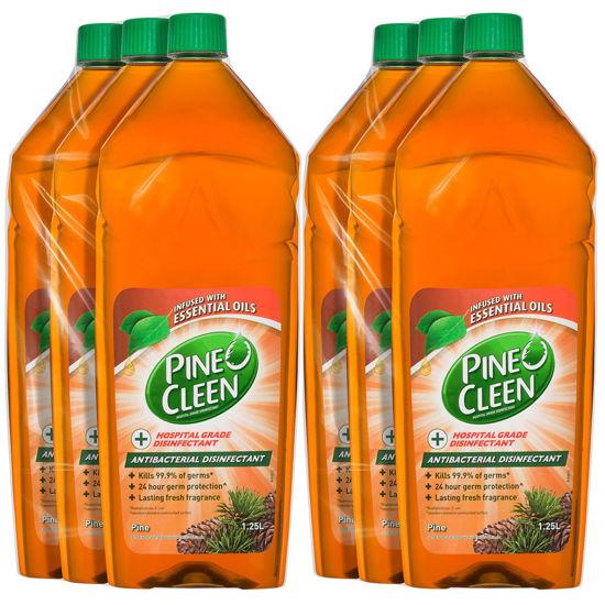 Antibacterial Disinfectant Liquid Pine